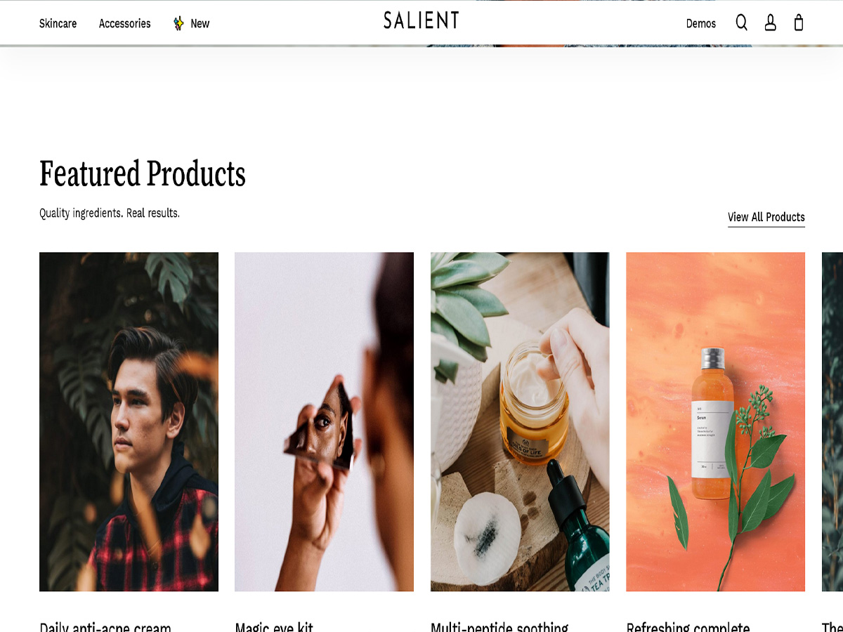 Salient-Review of the Multi-purpose Responsive theme (2021)